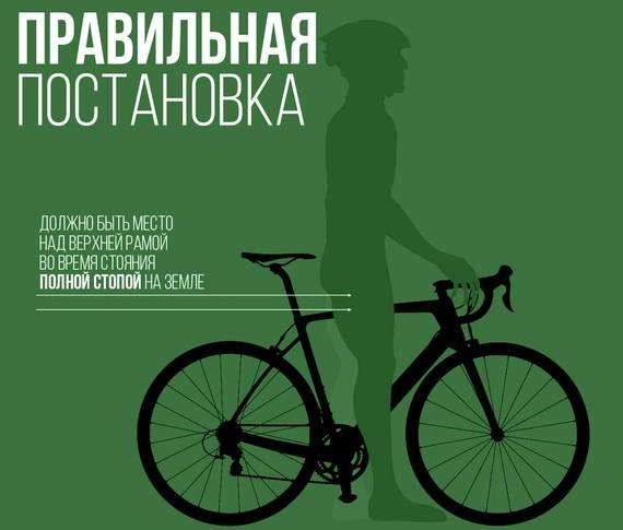 Выбор размера рамы велосипеда по росту