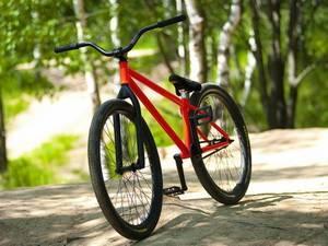Велоспорт для похудения