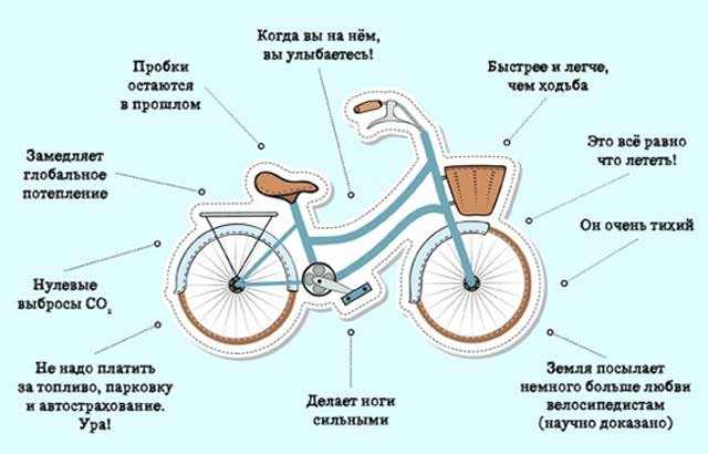 Польза велосипеда для здоровья