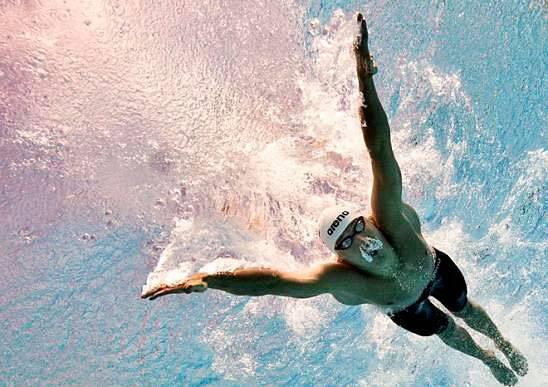 Стиль плавания баттерфляй техника