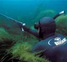 Какое подводное ружье выбрать