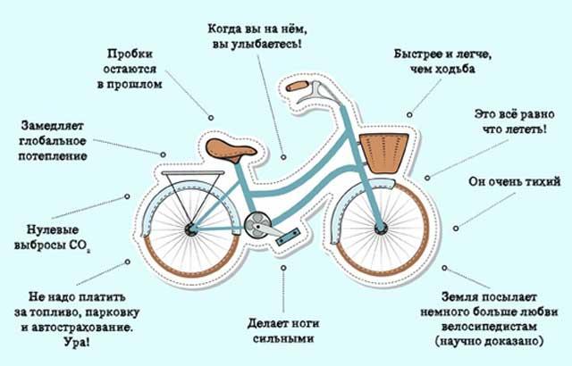 Чем полезен велосипед для здоровья