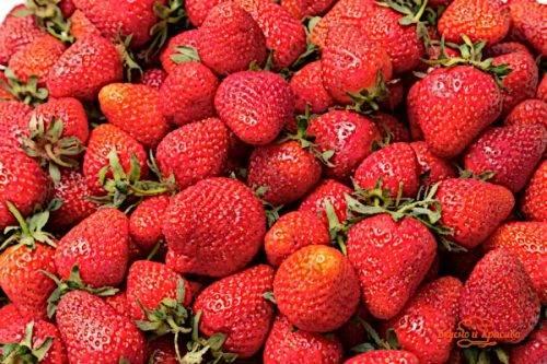 Можно ли есть фрукты после тренировки