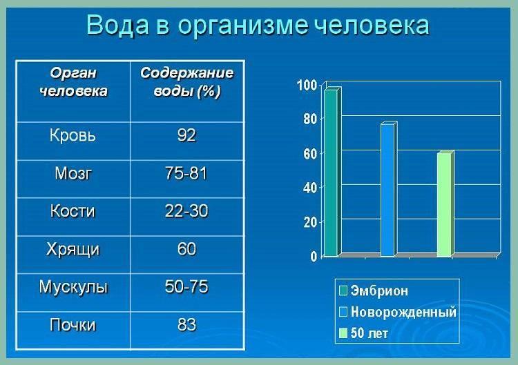 Сколько литров воды в человеке