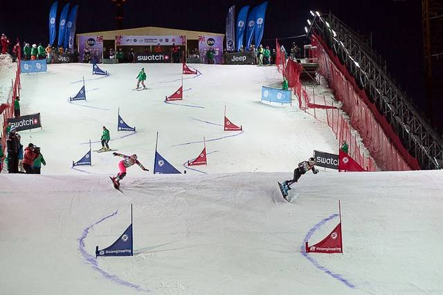 Лыжи и стрельба вид спорта