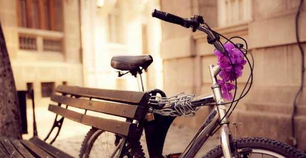 Как выбрать женское седло для велосипеда