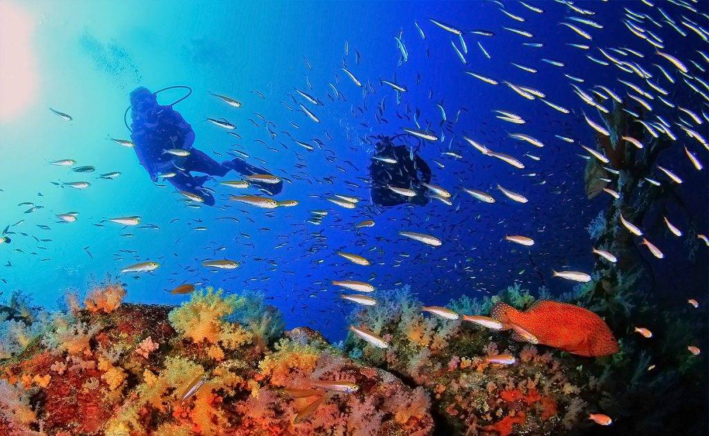 Подводное плавание с аквалангом как называется