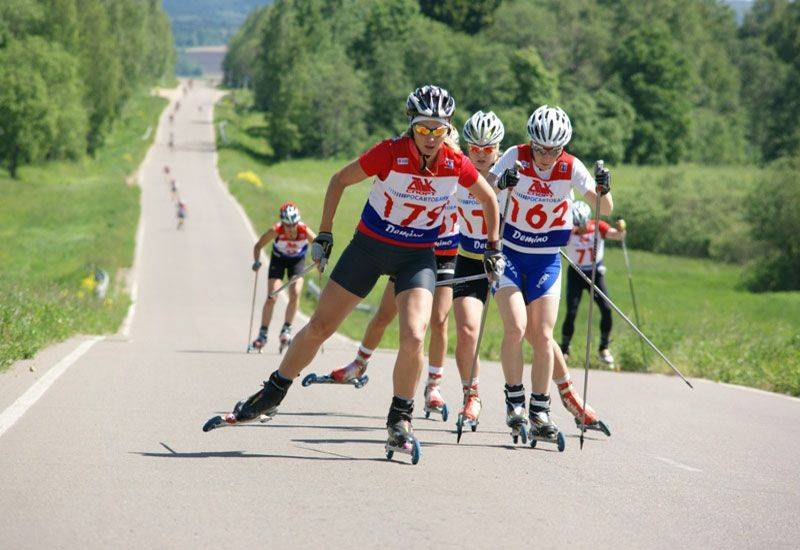 Летние лыжи на колесиках