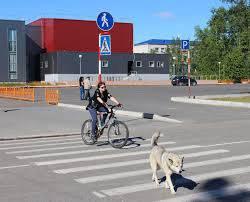 Как должен ехать велосипедист