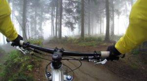 Чем полезен велоспорт