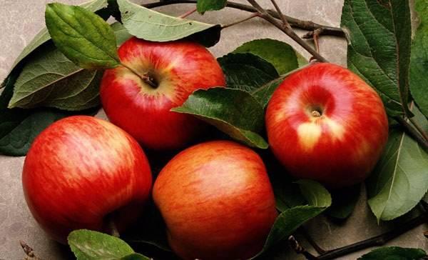 Калорийность среднего яблока