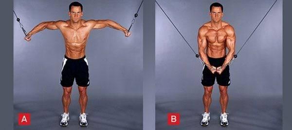 Тренировка грудных мышц в домашних условиях