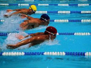 Как получить разряд по плаванию?
