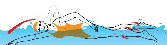Как быстро научиться плавать в бассейне