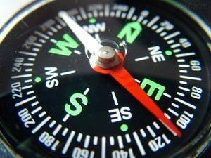 Часто стороны света на компасе обозначают английскими буквами