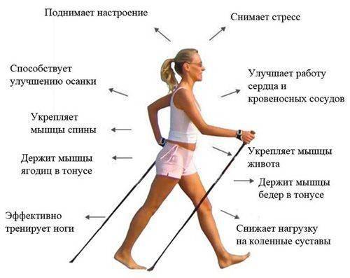 Как правильно ходить с палками