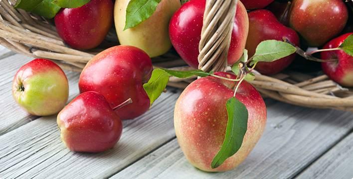 Яблоко кбжу
