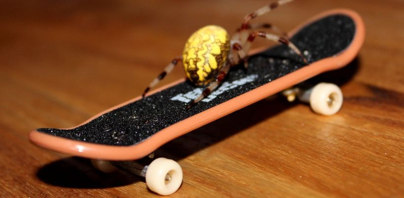 Пальчиковый скейт